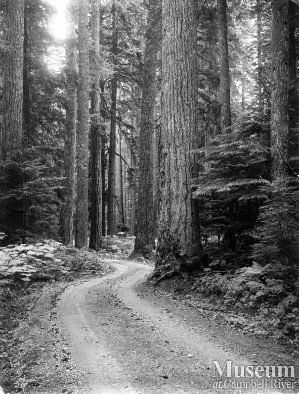 Island Highway near Campbell River, 1917
