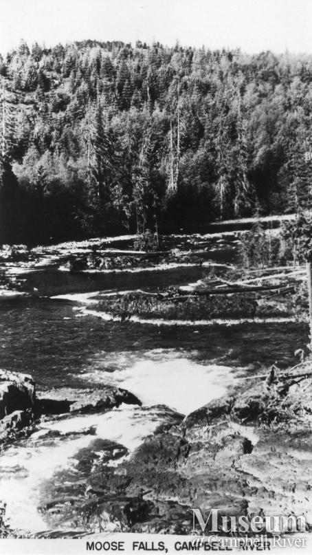 View of Moose Falls, Campbell River