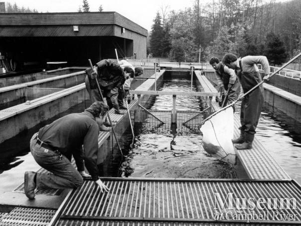 Quinsam Salmon Hatchery